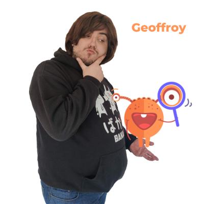 Geoffroy Vincent L'École des Réseaux Sociaux