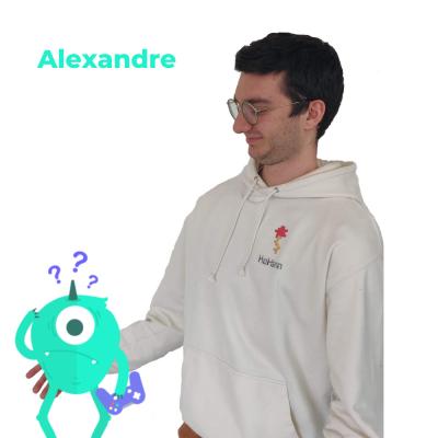 Alexandre L'École des Réseaux Sociaux